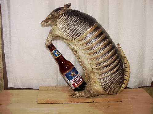 Standing Drunk Armadillo.  Sold Out.